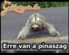 Pina!