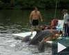 Kubaban keszult, es szerettem volna delfin lenni ebben a pozban!!!De meg mennyire!! Te is!  Ezt a filmet sehol nem lathattad, mert friss, sajat keszitesu!