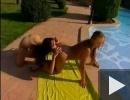 Leszbi csinibabák a medencében